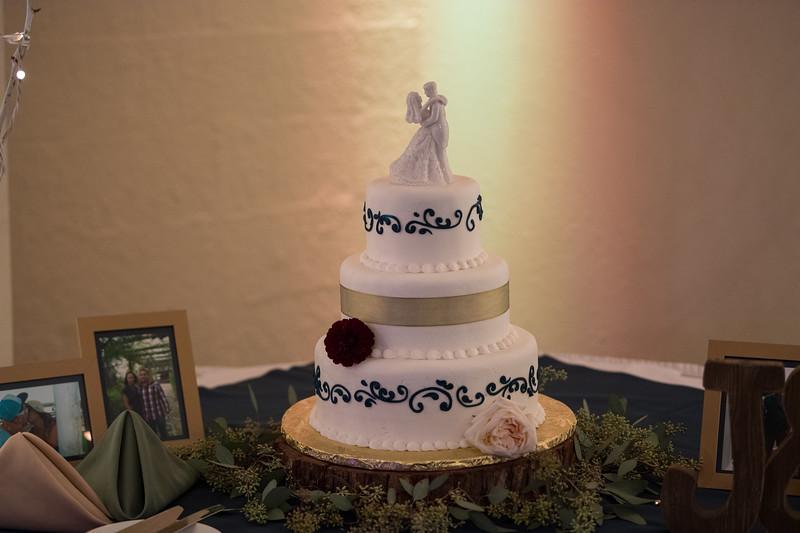 Fraizer Wedding the Reception (20 of 199)