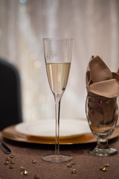 Fraizer Wedding the Reception (10 of 199)