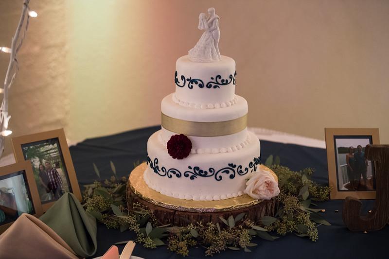 Fraizer Wedding the Reception (9 of 199)