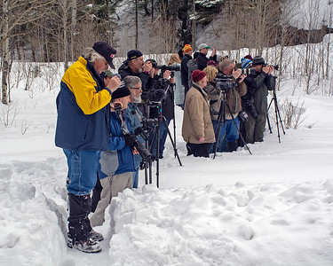 February 16, 2019.  Tall Timber.  The well dressed, well organized photo line waits for the next masterphot.  This was as far as we got since there was a slide between Tall Timber and Cascade.