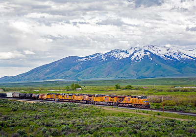June 6, 2019. Westbound at Deeth on the UP Lakeside subdivision ex-SP approaching Elko, Nevada.  In the background are the snowcapped Ruby mountains.