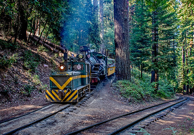 September 5, 2021.  The first train with Shay No. 1 was able to make it up the switchback unassisted.  But diesel 40 had to help Heisler 2 with its train.  The rail on the switchback is almost buried on all the sand that gets used.  It is a tough grade.
