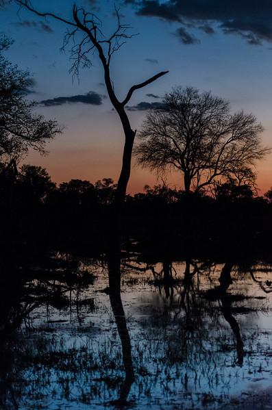 Sundowner Khwai River Botswana 1