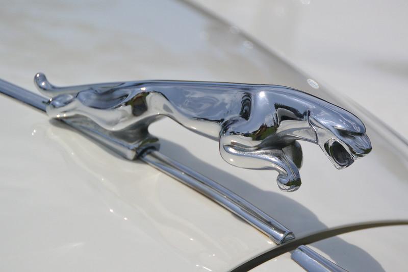 jaguar hood orn