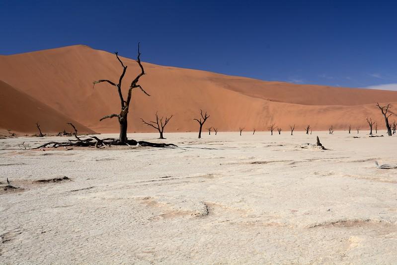 Dead vlei Namib Desert 4