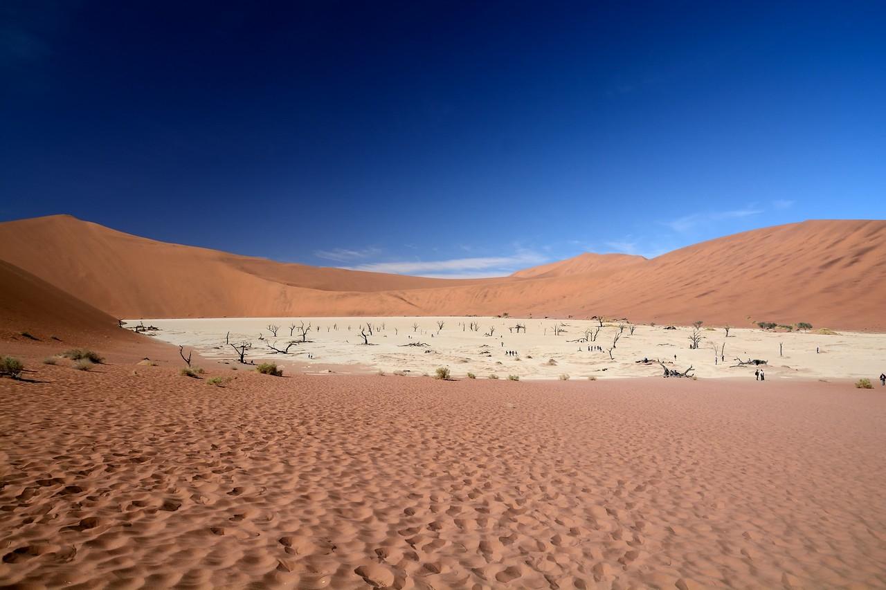 Dead vlei Namib Desert 1