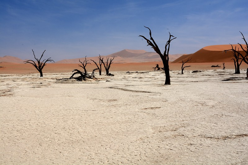 Dead vlei Namib Desert 11
