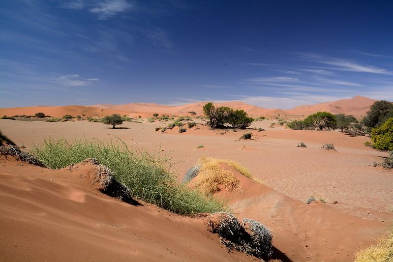 Sossus vlei Namib Desert 2