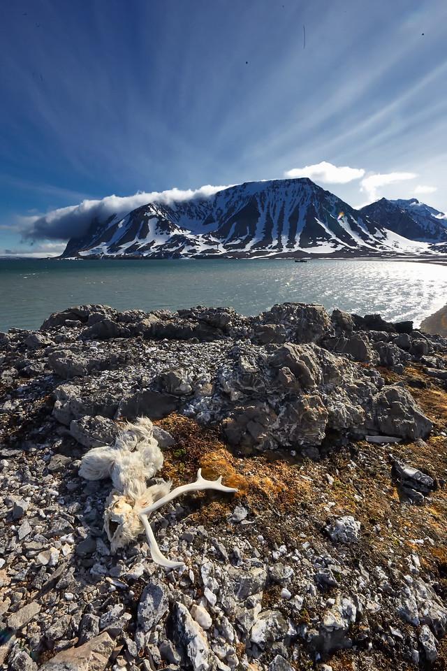 Svalbard 2017