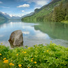 Glorious summer day on Chilkoot Lake. The dandelions are always beautiful until they are not! The horsetail and parsnip are lush as well. River is going to rise as the weather warms. I believe I will go fishing today before the torrent.