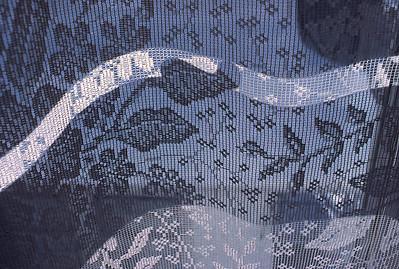 Lace Curtin