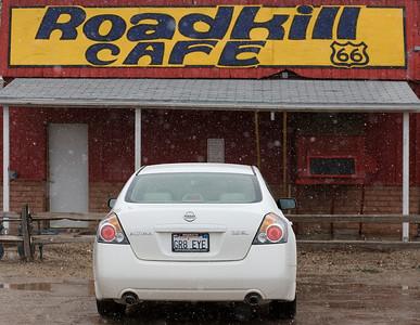 ROAD KILL_2159