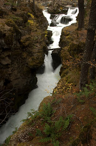 rogue river source_6354