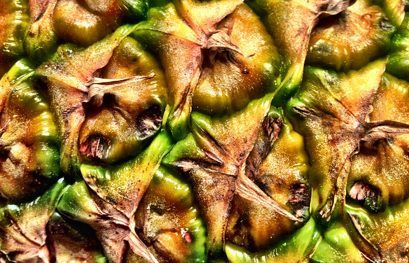 """03-13-2012: """"Tropical Patterns"""" an iPhoneography"""