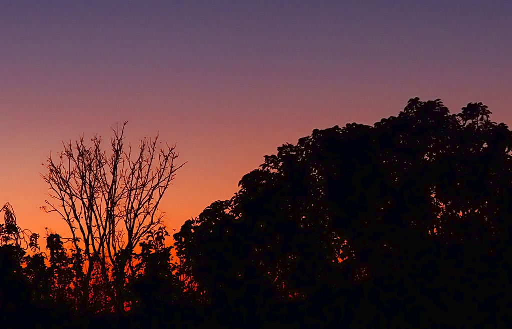 "03-01-2012 ""A gradation of twilights"""