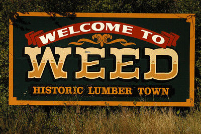 weed welcome