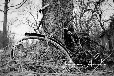 Old bicycle 1/1