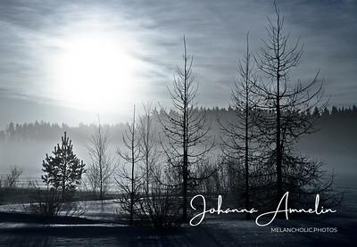 Talvi minun silmin-näyttely - Winter with my eyes-exhibition
