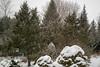 Snow in back yard-1120650