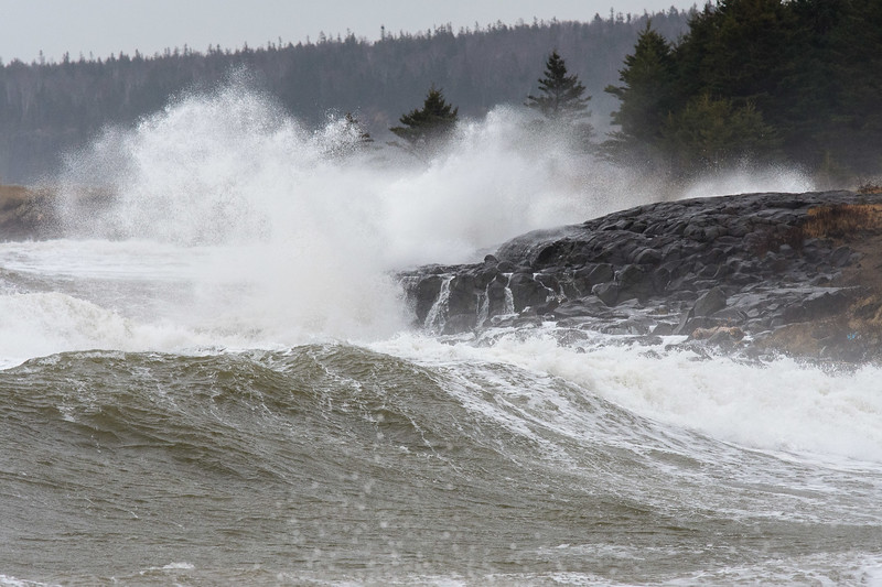 Fundy waves-9995