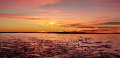 Dawn pelagic-060431