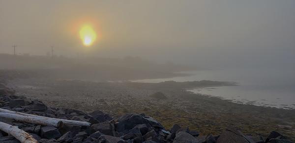 Brier Fog-201114