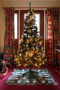 Xmas tree-1170554