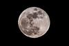Moon-8787