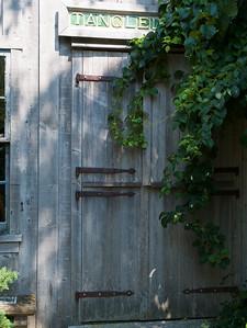 Tangled Garden _3910056.JPG
