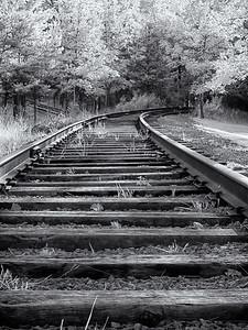 Dundas Rail Trail _1070163