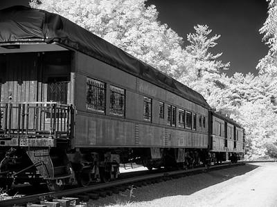 Dundas Rail Trail _1070126