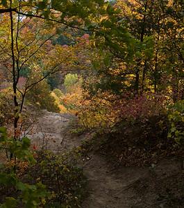 Tews Falls Trail _1150775