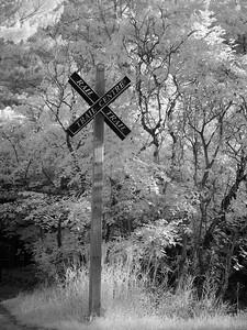 Dundas Rail Trail _1070168