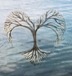 Heart Tree+Lsyer Lake ripple