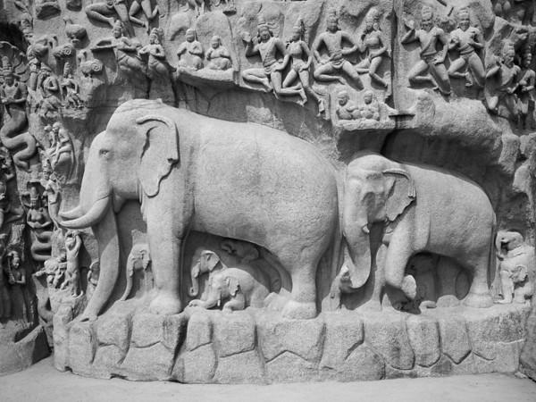 Elephant frieze