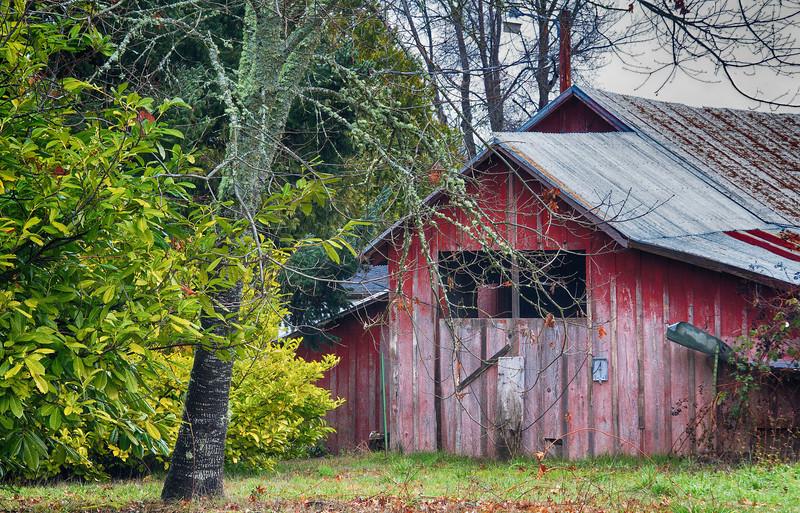barn yard ...