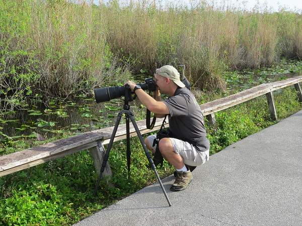 Photo visit to the Anhinga Trail