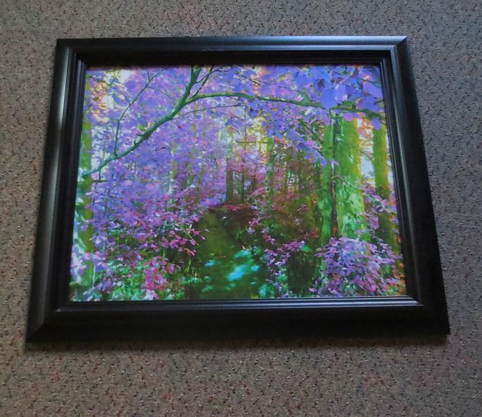 Wonderland framed. Size 11/14.