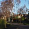 Carrick Road: Curzon Park