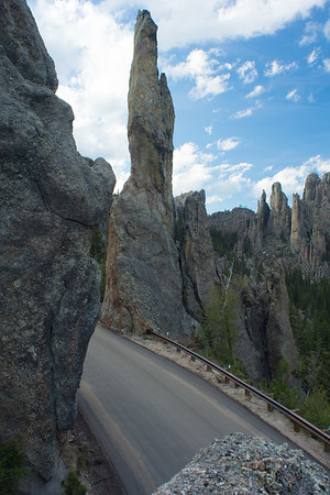 Custer State Park, Day 1