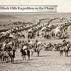 The Wagon Train on the Plains