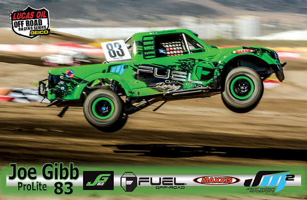 custom 11x17 high gloss poster created and printed for Joe Gibb # 83 ProLite driver
