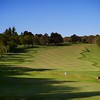 AT Golf Photo Ashley Picken Golf Academy 850-219