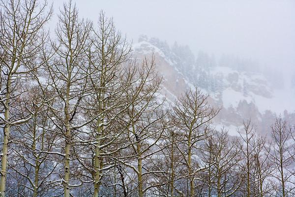 074 - White Durango Beauty, Colorado