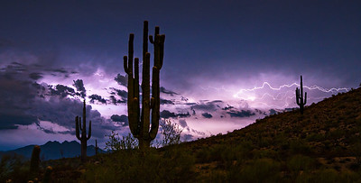 Lightning Storm with Ancient Saguaro Cactus and Distant Four Peaks Mountain and Browns Peak