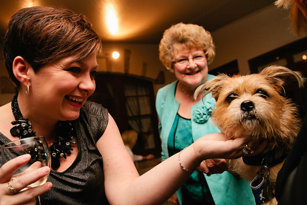 Blair County Humane Society