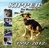After 20 years as my best friend and long time copilot, Kipper passed away on the 12th of July, 2012.  He'll be remembered and missed for a long time by a whole generation of hot rodders in the Northern Ohio area.