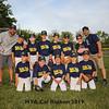 HYA Cal Ripken baseball on Monday 6-10-2019 @ Tuck Field, Hampton NH.  Matt Parker Photos
