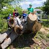 Kids sitting on a tree stump, HYA Cal Ripken baseball team photos on Saturday 6-15-2019 @ Tuck Field, Hampton NH.  Matt Parker Photos