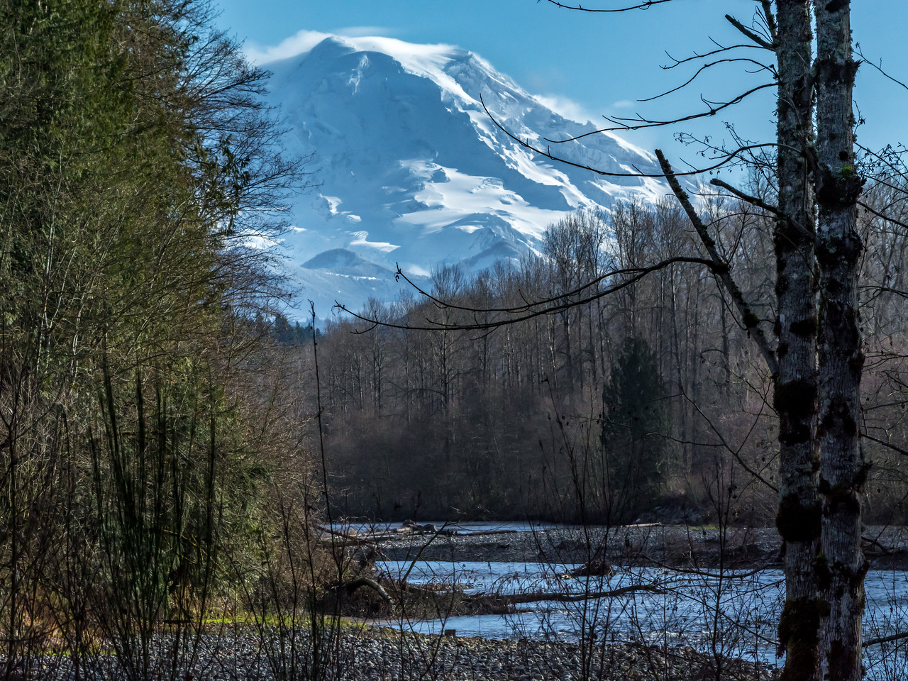Mount Rainier Over the Carbon